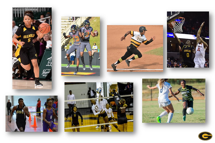 Sponsorship Collage Image
