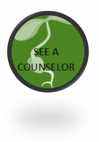 See a Counselor