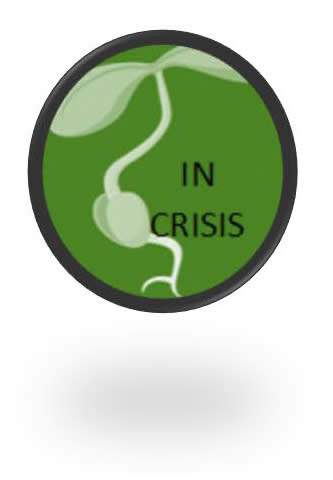 In Crisis